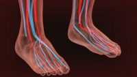 Cold Feet May Indicate Poor Circulation